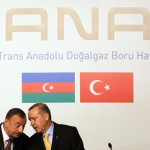 Turkish PM orders fulfillment of country's obligations on TANAP project implementation
