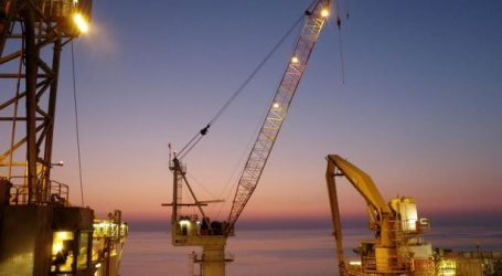 A foreign company is looking for a marine crane operator