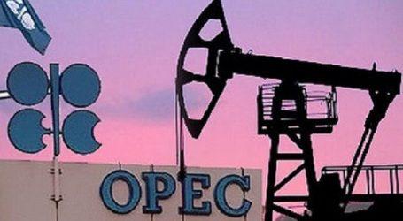 ОПЕК анализирует возможности сокращения добычи нефти
