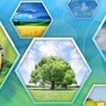 Госкомстат рассекретил данные по альтернативной энергетике