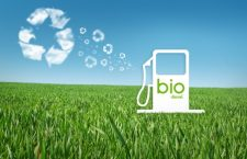 Eni to collect used vegetable oil from employees for biofuel