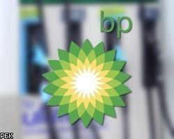 bp-d (1)