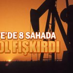 In 2013 turkey extracted 2.4 million tons of oil