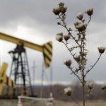 Neft Fonduna ACG-dən daxilolmalar nə qədər azalıb – Caspian Barrel-in araşdırması