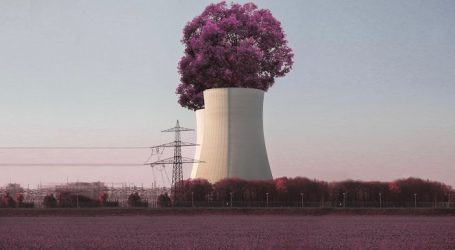 Атомная энергия в 2020 году доказала свою надежность