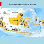 Indonesia to become equal OPEC member in December