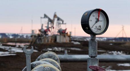 Новак ожидает роста мирового спроса на нефть в 2021 году