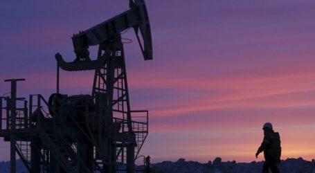 """Рынок нефти растет, поскольку спрос прошел """"дно"""" падения"""