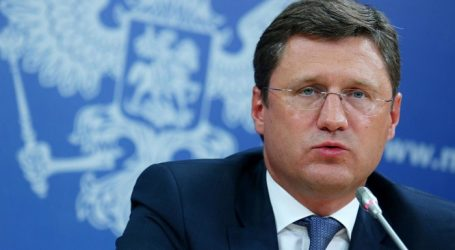 Новак: Дрова составляют 10% мирового энергобаланса