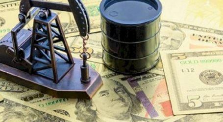 Azərbaycan neftinin bir barreli 16,61 dollara satılır