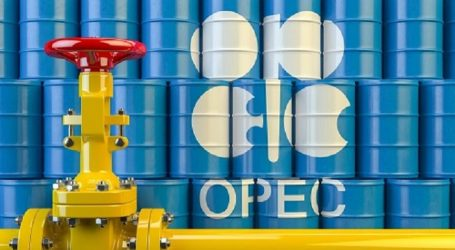 В ОПЕК+ подготовили проект по размерам сокращения добычи нефти