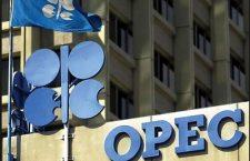 Məhəmməd Barkindo: Böyük məmnuniyyətlə Bakıda keçiriləcək OPEC+ konfransında iştirak edəcəyik
