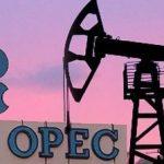 ОПЕК обнародовал прогнозы по нефтедобыче в Азербайджане