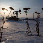 Россия сократила добычу нефти на 133 тыс. баррелей