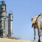 Səudiyyədə benzin 40 faiz bahalaşdı