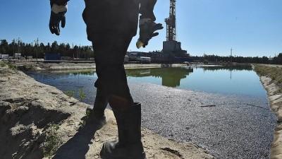 Если цена на нефть будет расти, спроса на реформы не будет