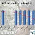 Monetar siyasətin nəticəsi: 4 ayda $5,5 mlrd vəsait itirilib, manat 34% ucuzlaşıb